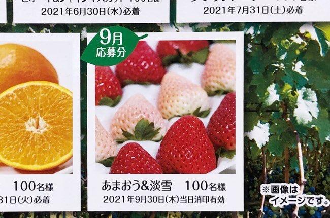 果汁グミキャンペーン9月応募分
